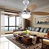 Simple Modern Ceiling Fan with Led Bowl