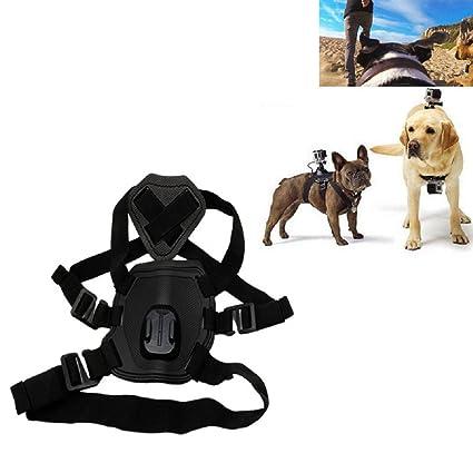 top-sell Hound Dog Fetch Arnés Cinturón de pecho correa monte para ...