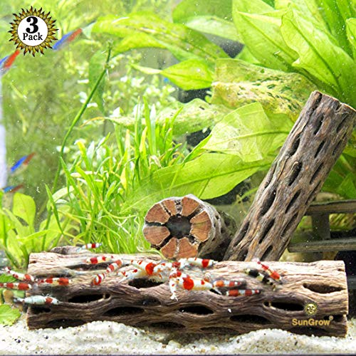 """SunGrow 3 Cholla Wood Pieces for Shrimp - Natural, Thorn-Free 6"""" Dried Husk of Cholla Cactus - Excellent Food Source, Protective Hideout - Organic Decoration for Dwarf Shrimp, Hermit Crabs, pleco (Shrimp Cherry)"""