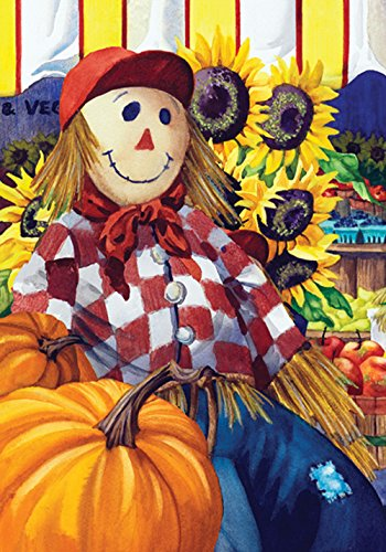 Toland Home Garden Fall Farm Stand 12.5 x 18 Inch Decorative Autumn Harvest Market Scarecrow Pumpkin Garden Flag Scarecrow Decorative Banner