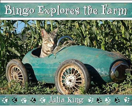 Bingo Explores the Farm