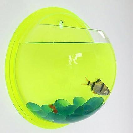 Creative acrílico soporte de pared para colgar gancho para la pecera acuario goldfish Bowl