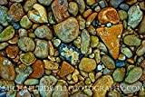 18'' x 24'' Medina River Rocks Canvas Print by Michael Tidwell Photography