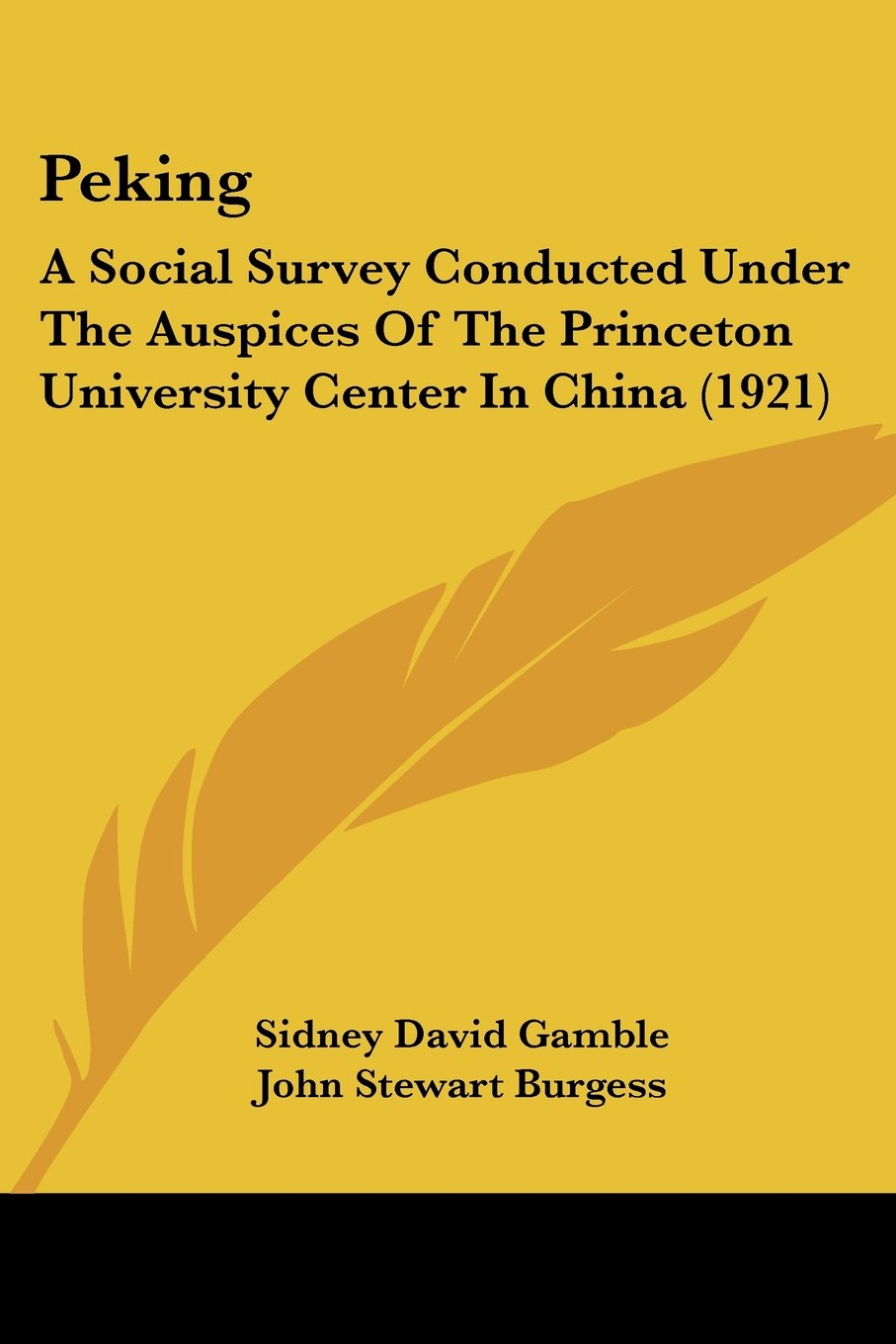 Download Peking: A Social Survey Conducted Under The Auspices Of The Princeton University Center In China (1921) PDF