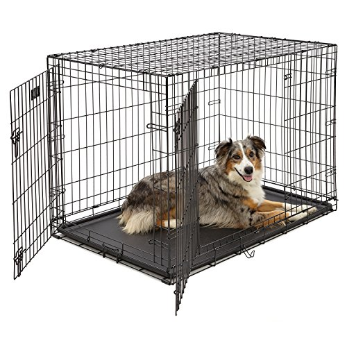 "MidWest iCrate 42"" Double Door Folding Metal Dog Crate w/ Divider Panel, Floor Protecting ""Roller"" Feet & Leak-Proof Plastic Tray; 42L x 28W x 30H Inches, Large Dog Breed"