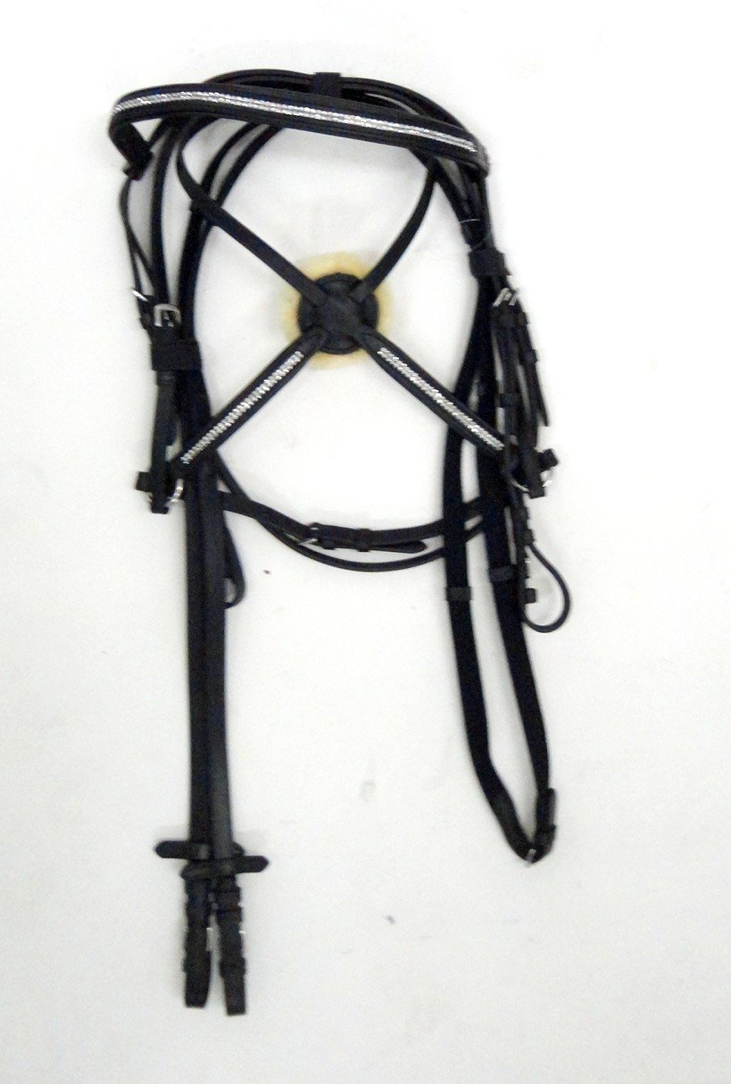 M Hkm Reittrense with Mexican Riding Halter