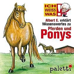 Albert E. erklärt Pferde und Ponys (Ich weiß was)