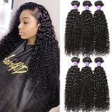 hair weave sealer - Hermosa Brazilian Curly Hair 3 Bundles Double Weft Curly Weave Human Hair Bundles 10A Unprocessed Brazilian Virgin Hair Black Color 14 16 18inch