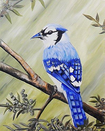 Buyartforless Blue Jay 16x12 Art Print Poster Garden Wildlife Birds Bluejay by Ed Capeau Made in The USA