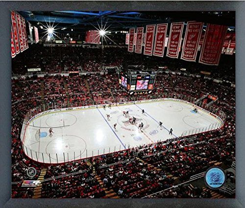 Red Photograph Detroit Wings - Joe Louis Arena Detroit Red Wings NHL Photo (Size: 17