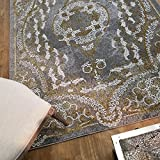 Maxy Home Silky Gold Contemporary Gold Kingdom 5 ft. 3 in. x 7 ft. 7 in. Area Rug Review