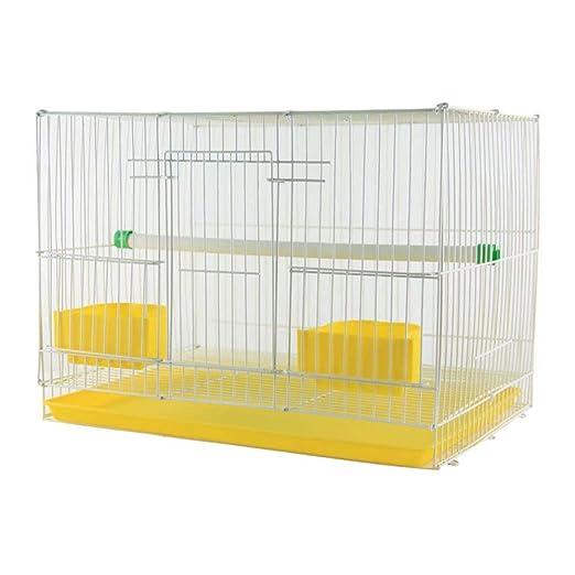 GL-birdcage Jaula de pájaros Jaula Paloma Grande estornino zorzal ...