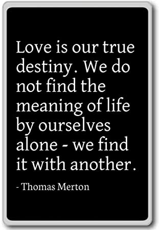 Destiny Love Quotes Classy Amazon Love Is Our True Destiny We Do Not Find The