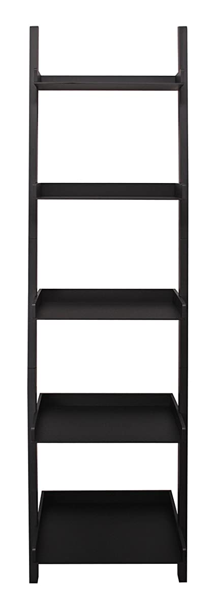 Kiera Grace Hadfield 5-Tier Leaning Wall Shelf - 18 by 67-Inch, Black