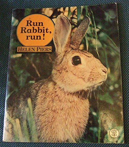 Rabbit run essays