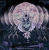 All Them Witches: Lightning at the Door (Lp+Mp3,180g) [Vinyl LP] (Vinyl)