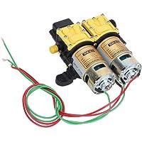 Qiter Pulverizador eléctrico agrícola de 12 V Bomba de diafragma de Alta presión Bomba de Agua pequeña Bomba de Agua con Motor de Doble núcleo Pulverizador eléctrico