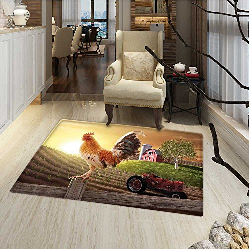 Modern Door Mats for inside Farm Barn Yard Image Kitchenware and Home Decor Rooster Early Bird Natural Sunrise Customize Bath Mat with Non Slip Backing 24