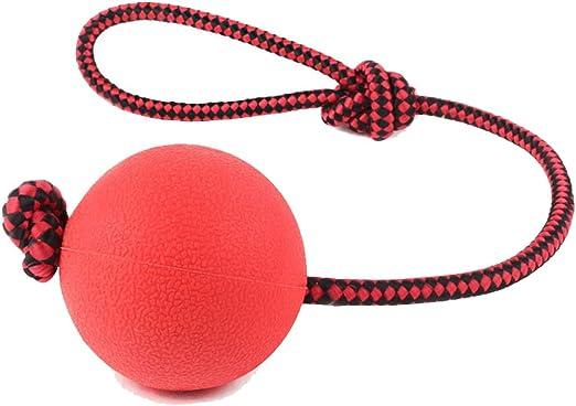 Pelota de juguete para perro Jiele, bola de goma duradera con asa ...