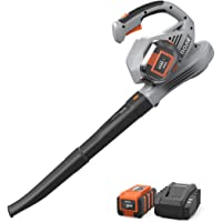 Anker Roav 36V Cordless Leaf Blower and Charger Included