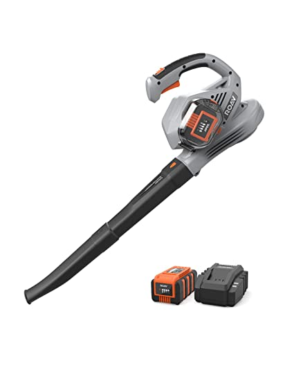 Anker Roav 36V Cordless Leaf Blower, 220 MPH Max Speed, Lock Switch, 3 0 AH  Battery and Charger Included