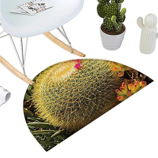 Amazon.com: Cactus - Felpudo de semicirculo, diseño de ...