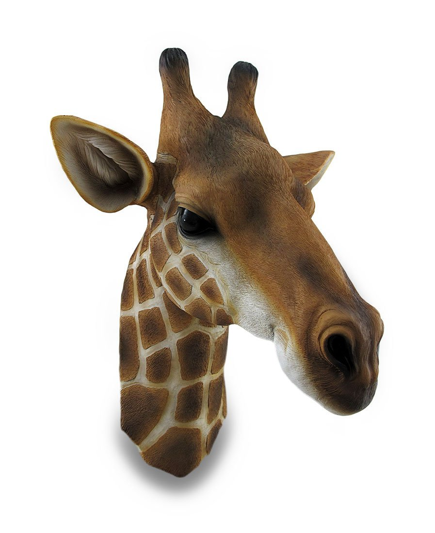 Giraffe Bust Exotic Trophy Head Wall Hanging Sculpture Zeckos