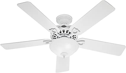 Hunter 53059 Astoria 52 Inch 5 Blade Single Light Ceiling Fan Snow White With White Light Oak Blades And Swirled Marble Glass Bowl Light Ceiling Fans Amazon Canada
