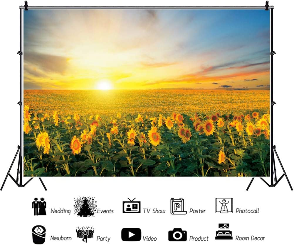 YEELE 10x8ft Spring Sunflowers Photography Backdrop Field of Blooming Sunflower Sea Sunset Background Nature Field Birthday Wedding Kids Girls Portrait YouTube Videos Photobooth Props Wallpaper