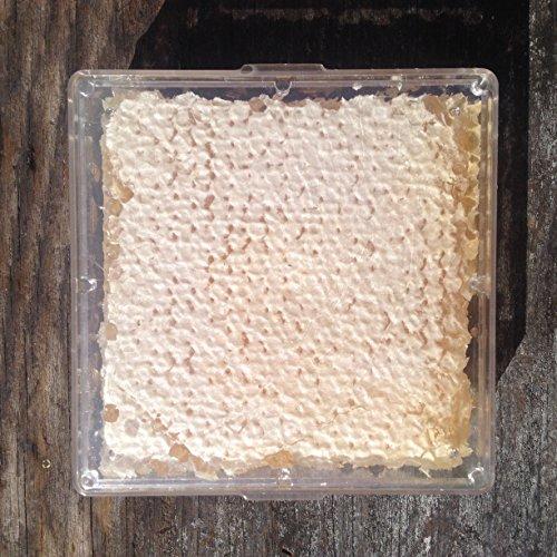 Buzzn Bee Raw Wildflower Honeycomb - (12 ounces) - 4