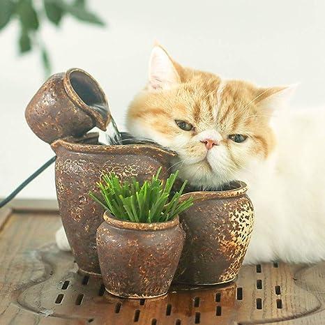 Bebedero Gatos Fuente de Agua del Gato para Gatos y Perros ...