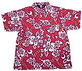 Boys Hibiscus Button Down Hawaiian Shirt (2, Red)