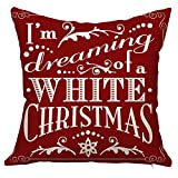 Christmas Decorations - Best Reviews Guide