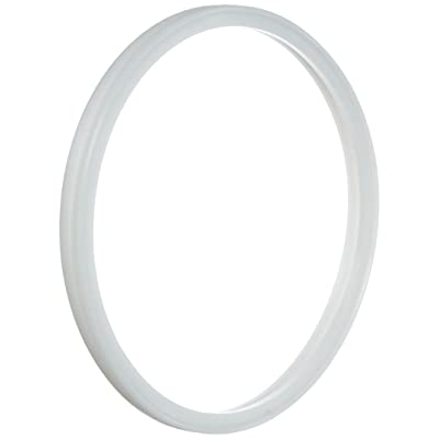 Pentair 614516 Hatteras Lens Gasket Replacement Pool Star Pool and Spa Light: Garden & Outdoor