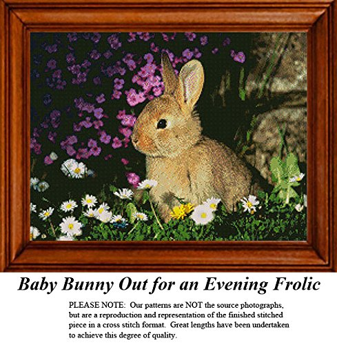 Baby Bunny Out for an Evening Frolic, Animal Counted Cross Stitch Pattern (Pattern Only, You Provide the Floss and Fabric) Bunny Needlepoint