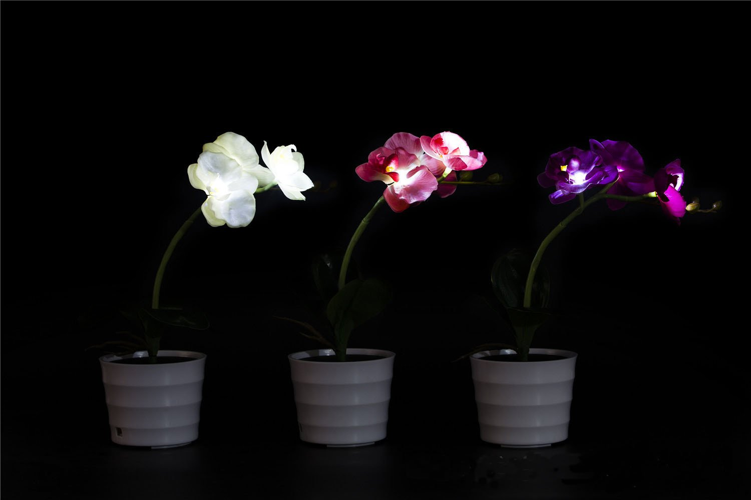 FANStek LED Lighted Artificial Orchid Flower Solar Orchid Pot with 3 Lights(White) (White)
