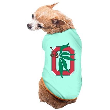 757bc8774a2cd Amazon.com : Ohio State Buckeyes Football Team Cute Dog Shirt : Pet ...