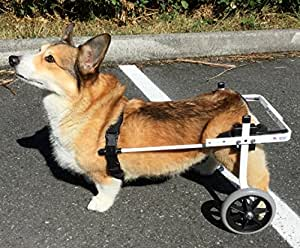 Amazon.com : K9 Carts Rear Support Wheelchair - Medium