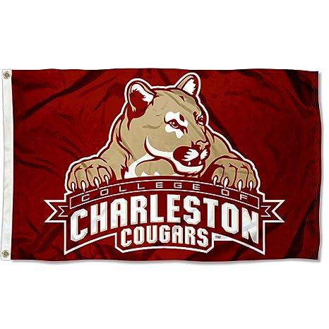 Charleston Cougars C Of C University Large College Flag