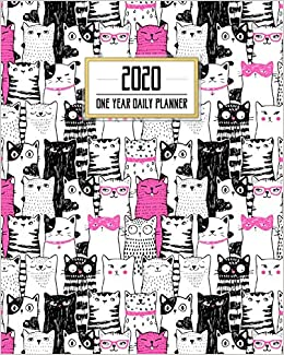 2020 One Year Daily Planner: Crazy Cat Lady Daily Weekly ...
