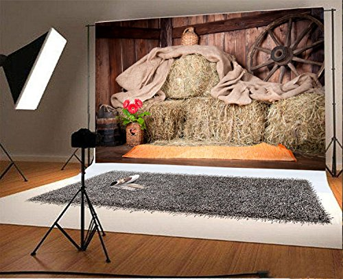Laeacco 7x5FT Vinyl Backdrop Photography Background Village Rural House Interior Scene Hay Wheel Stack Bucket Rustic Farm Countryside Scenery Red Flower Wood Wall Adult Art Shoot Photo Studio Props
