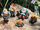GlitZGlam Happy Gnomes Camp - 6 Piece Garden Gnome Set for the Miniature Fairy Garden by
