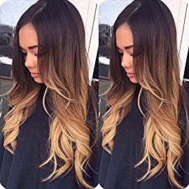 Alyssa Three Tone Brazilian Human Hair Full Lace Wigs Ombre Colored Virgin Hair Lace Front Wigs With Baby Hair For Women 12in-24in