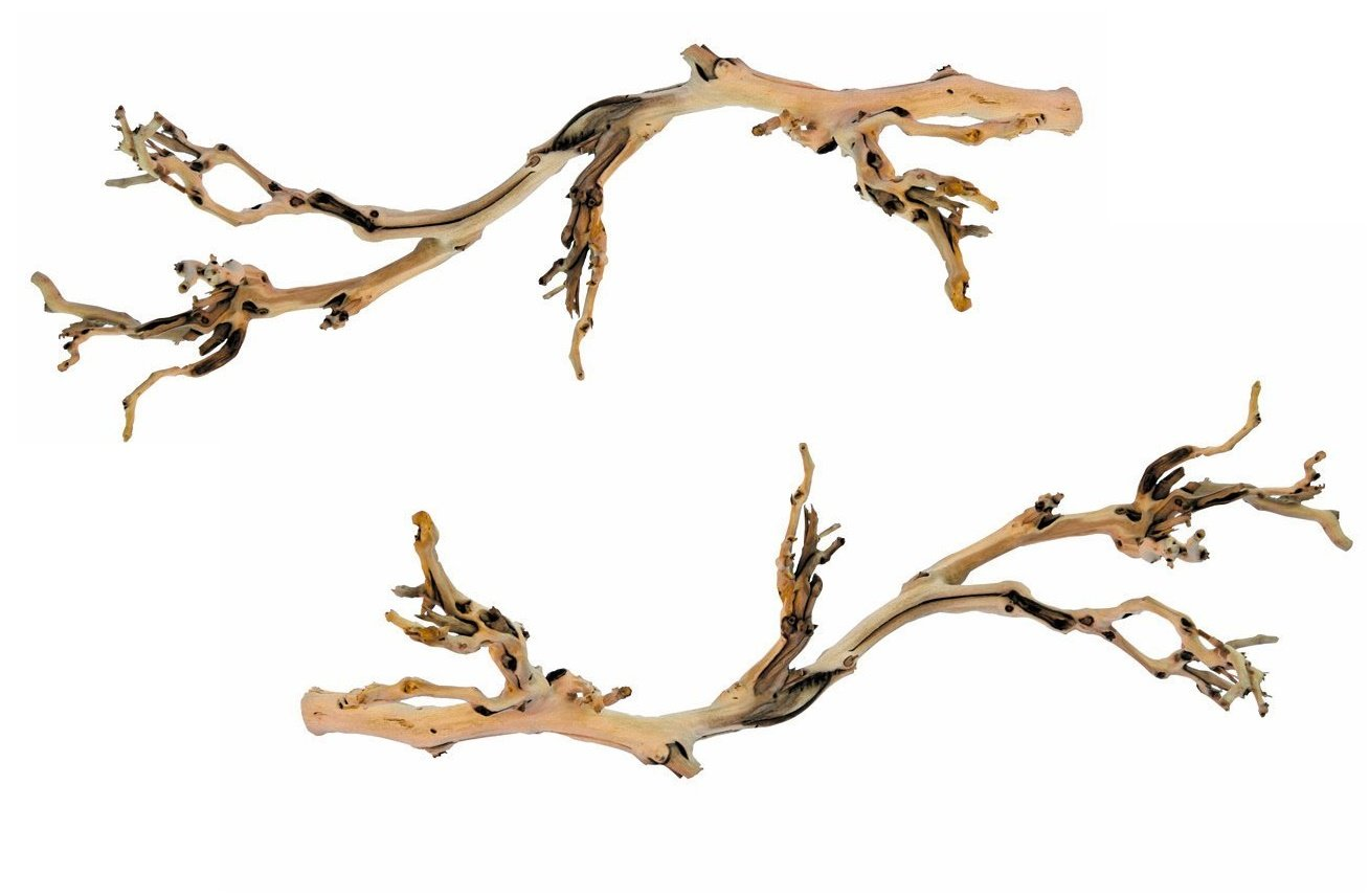 (2 Pack) Exo Terra Forest Branches, Large