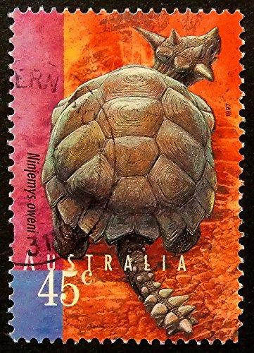 ninjemys oweni Owen de la tortuga ninja - diseño de postal ...