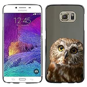 TopCaseStore / la caja del caucho duro de la cubierta de protección de la piel - Funny Curious Owl - Samsung Galaxy S6 SM-G920