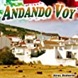 Andando Voy - Single