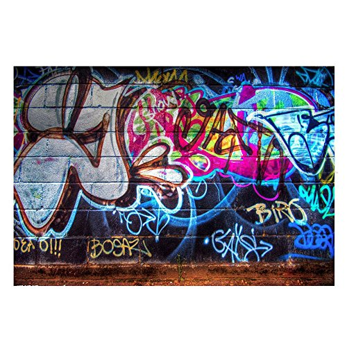 (FUT Newest Colorful Graffiti in the Wall Vinyl Backdrop Background for Wall Decor Studio Photography Television Backdrops)