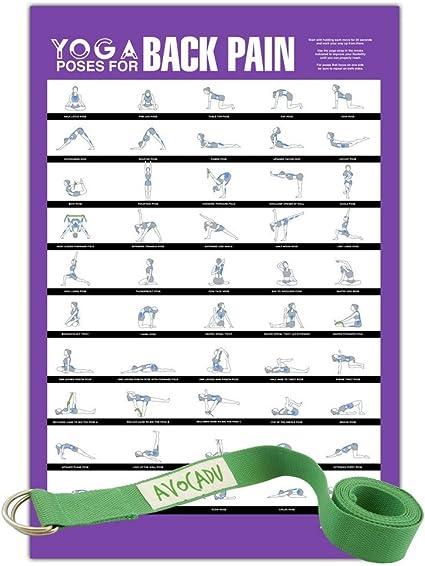 Amazon.com: Avocadu - Poses de yoga para dolor de espalda y ...