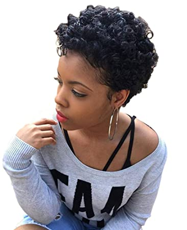 Short Black Afro Curly Wigs For Black Women